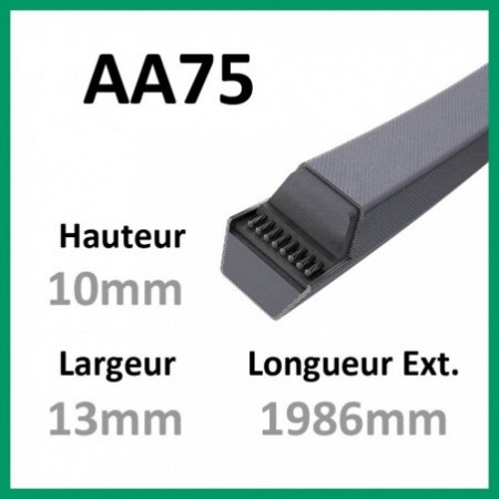 Courroie Hexagonale AA75 - Continental - 1-courroie-tondesue.com