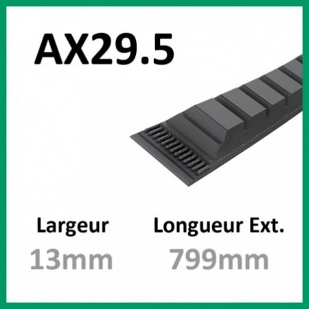 Courroie AX29.5 - Teknic - 1-courroie-tondesue.com